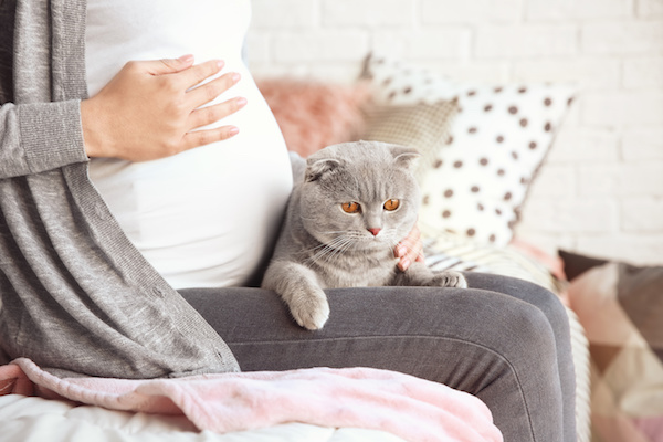Toxoplasmosi e Gravidanza